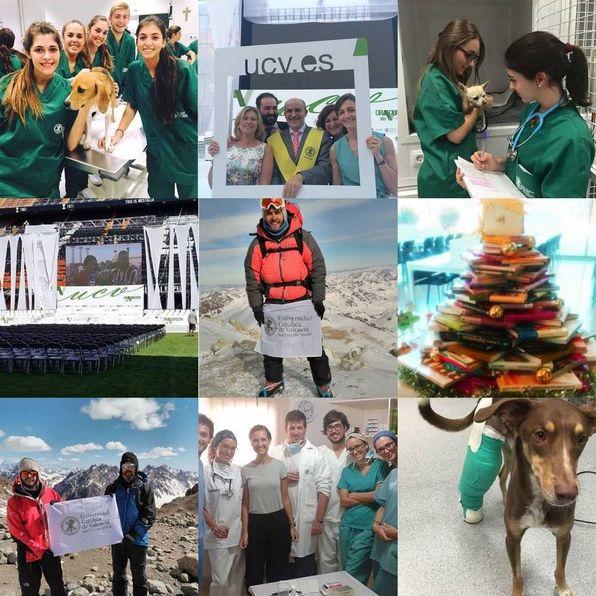 Estas son nuestras mejores #fotos del año en Instagram!! #AlumnosUCV #2015bestnine