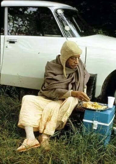 I watched as hundreds of ants circled his(Prabhupada) plate and finally descend upon his prasadam. They seemed to know when they were allowed on a certain preparation. -Srutakirti Das, Memories of Srila Prabhupada.