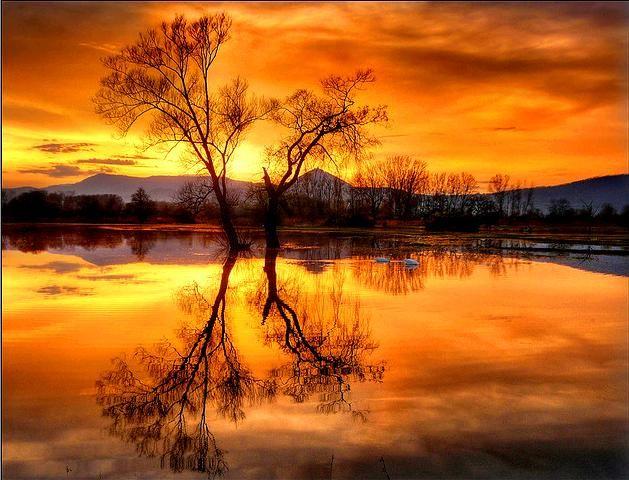 Chìm đắm vào vẻ đẹp yên bình của thiên nhiên!