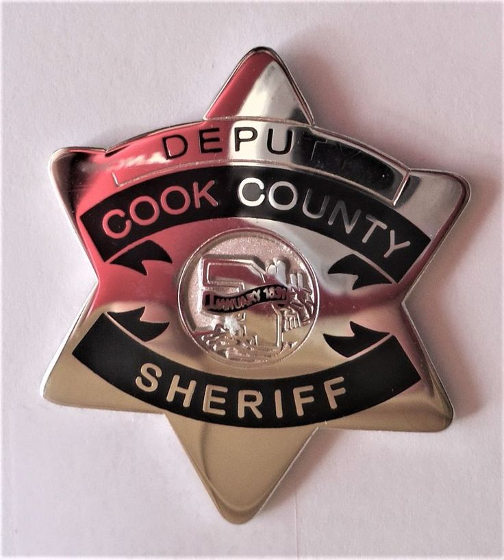 Cook county sheriff on Pinterest Fred hampton, Police cars and - cook county correctional officer sample resume