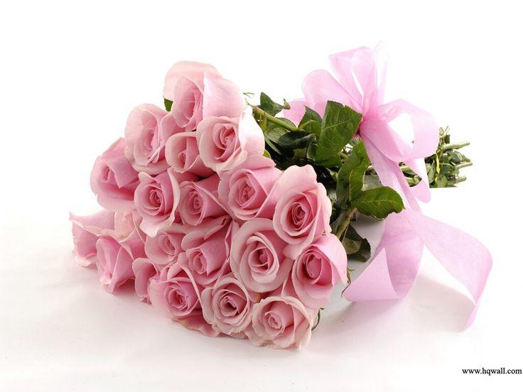 19 best Flowers images on Pinterest | Beautiful flowers, Beautiful ...