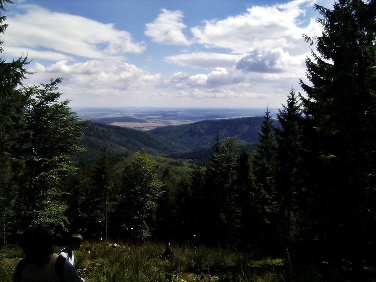 Góry Sowie - droga na Kalenicę