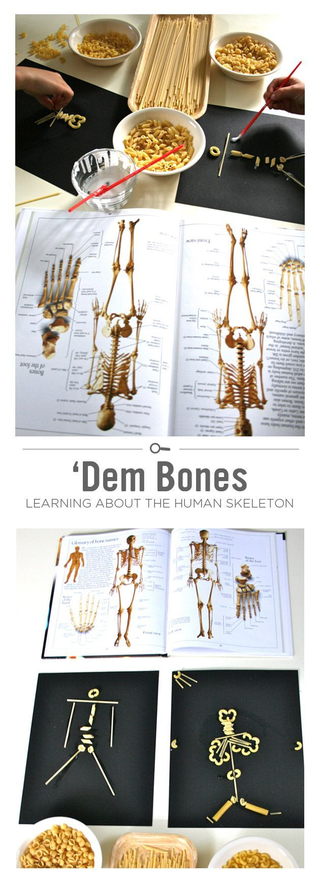 {Dem Bones: Learning About the Human Skeleton} Educational pasta play *Perfect for keeping kids entertained while you work on dinner