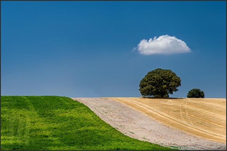 Dry cloud