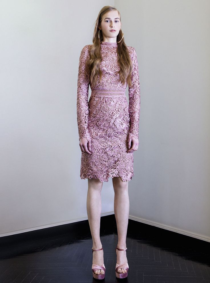 PR 1775 Embroidered Cut Lace Wiggle Dress, Vintage Rose