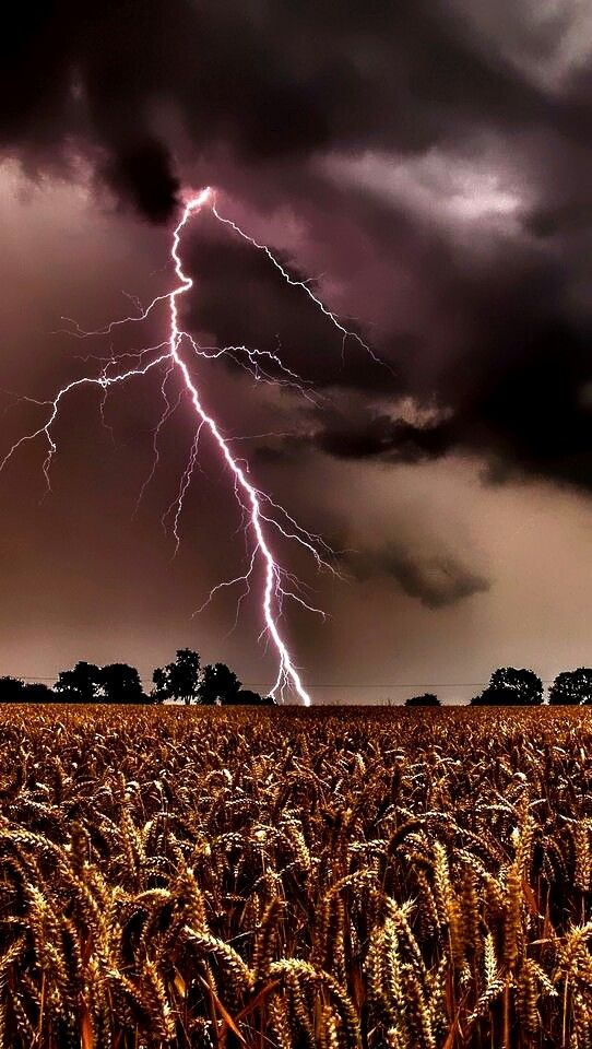 I love thunder and lightning .I don't like being out in it but love watching from inside . It's fun to watch the lightning strike and then count til the thunder  booms ! If you have ever been in the mountains during a thunderstorm OMG ... Kaboom mmm
