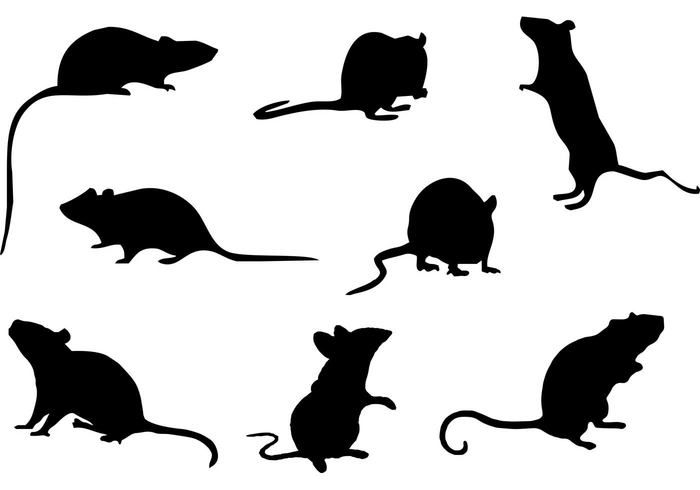 Download Free Mice Silhouette Vector | Mouse silhouette, Rat ...
