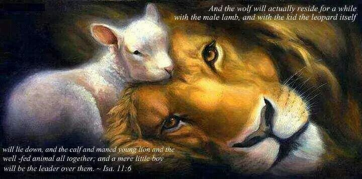 Isaiah 11:6 This is so sweet and touching to me. I can't wait to be at peace with all animals and for them to be at peace with eachother!