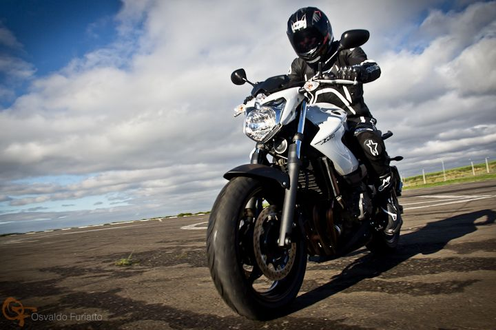 Yamaha XJ6 #umamotopordia #osvaldofuriatto