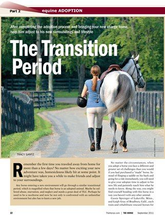 [SPECIAL REPORT] Horse Adoption Part 2: The Transition Period - TheHorse.com   After completing the adoption process & bringing your new horse home, help him adjust to his new surroundings. #horses #adoption