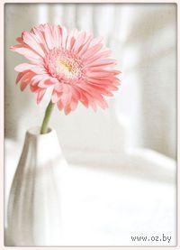Вышивка крестом `Розовая гербера`