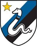 FC INTERNAZIONALE  badge used in the  1963 - 1973