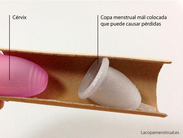 ¿sufres Pérdidas con la copa menstrual?  Descubre las razones por qué tienes pérdidas con tu copa menstrual. Lo que nadie antes te ha explicado! http://www.lacopamenstrual.es/como-se-usa-la-copa-menstrual/perdidas-con-la-copa-menstrual/ #lacopamenstrual #copasmenstruales #copamenstrual