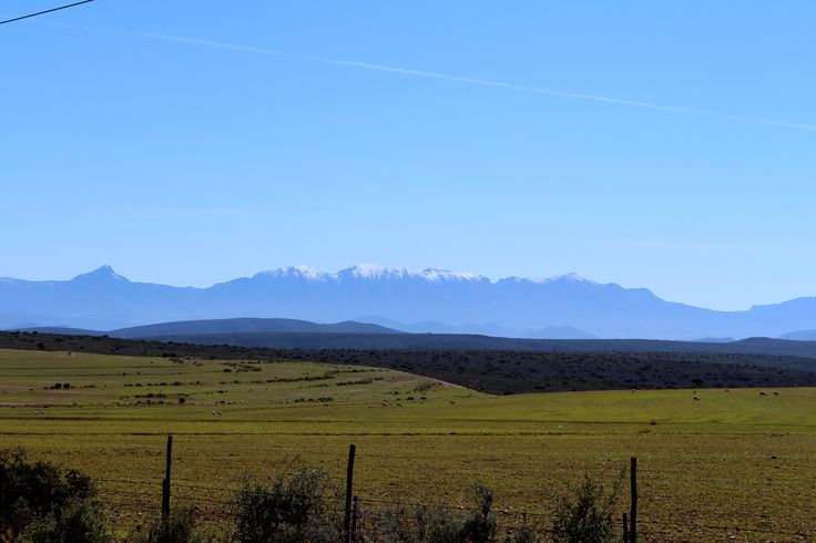 Somewhere between George and Oudtshoorn in the Little Karoo. In the background lies the Swartberg mountain range covered in snow. An aircraft's trail crosses the sky.