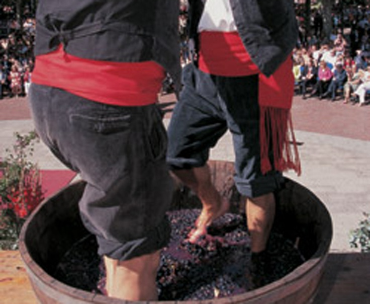 Rioja Wine Festival Tour - yes, we will take two of these please.