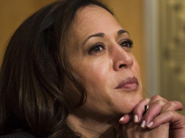 Ex-Bill Clinton Pollster Urges Kamala Harris to Run for POTUS