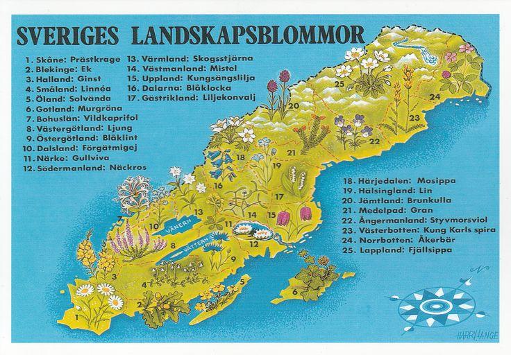 Fleurs et Plantes de Suède