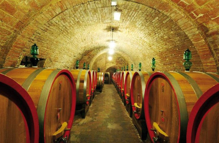 """Umbria is nature and sport but also art and culture. It has a beating heart hidden """"underground"""" and you will discover it tanks to tours included in this package. Not miss the privilege to explore the silent and mysterious places in the undergrounds of Narni, Orvieto and Todi. #dreavel #narni #orvieto #todi #underground #sotterranei #prodottitipici #tipicalproducts #discoverumbria #discoverorvieto #discovernarni #discovertodi #tourism #toursinumbria #umbria #hiddentreasures #igersitalia"""