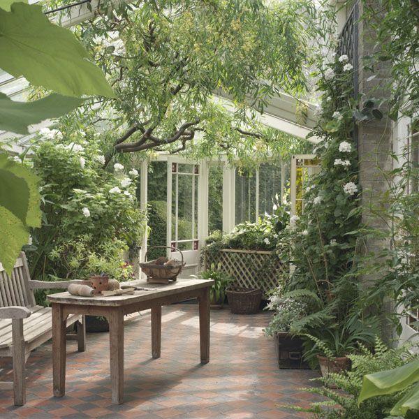 Japanese Garden Indoor: 166 Best Garden Bonsai Images On Pinterest
