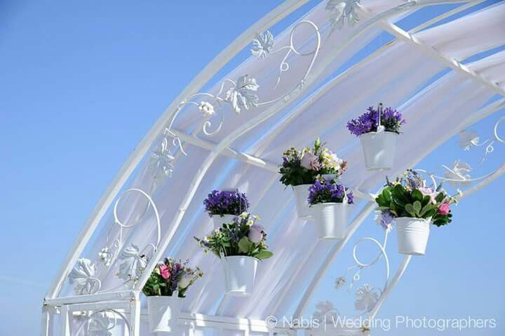 Lilac and Tulle