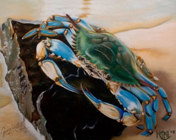 Chesapeake Bay Blue Crab Giclee Reproduction Art Print Artist Proofs made from Original Pastel Artwork
