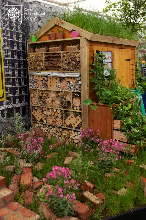 The Evolution of Capel Manor College & Garden - not just a bug hotel, a real 'Bug Ritz'!