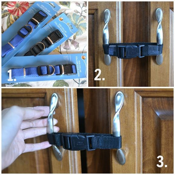 Use dollar store dog collars for baby proofing the cabinets! The only thing I would do differently is turn it around so the clasp isn't in front! Idea byMarried Minzilla Learn how to sew a dog collar bow tie! Instructions found here by Good Dogs Co Turn a belt into a dog collar! Find the …