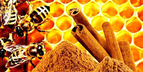 Benefits of honey and cinnamon2.jpg