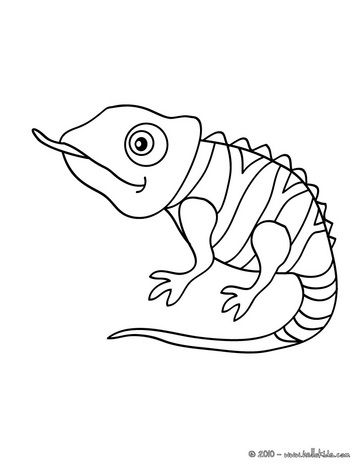 cute chameleon coloring page more