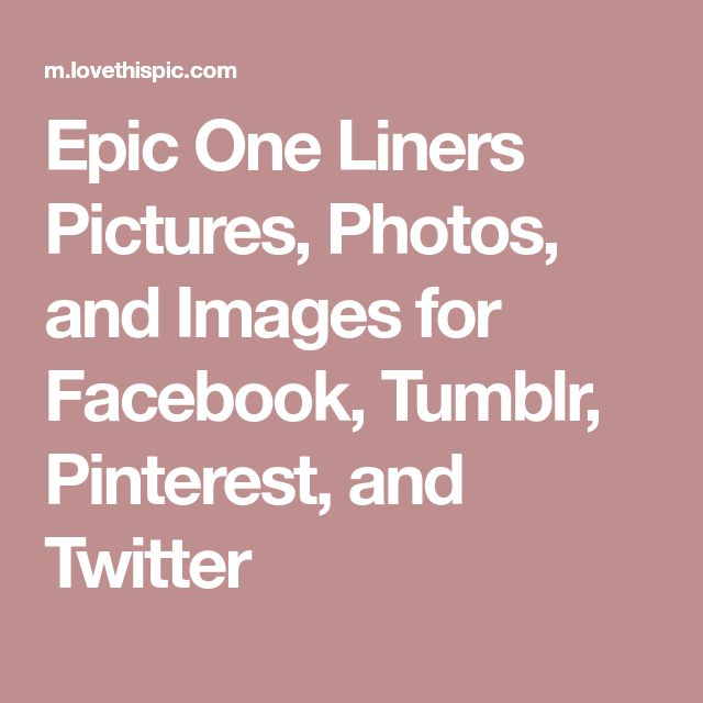 Epic One Liners Pictures, Photos, and Images for Facebook, Tumblr, Pinterest, and Twitter