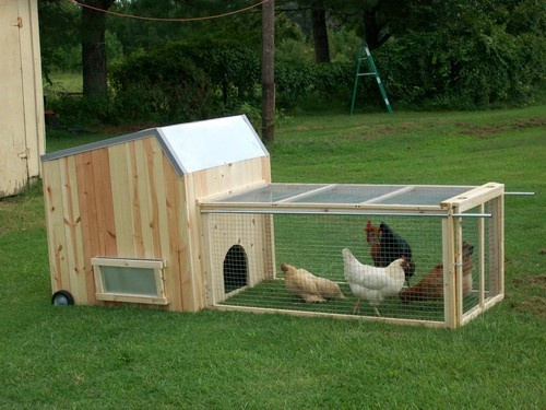 how to build a chicken coop for 40 chickens