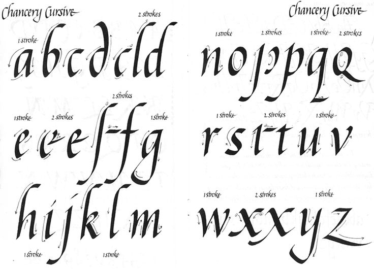 Cursive Calligraphy Alphabet Dig These Krazy Kolors