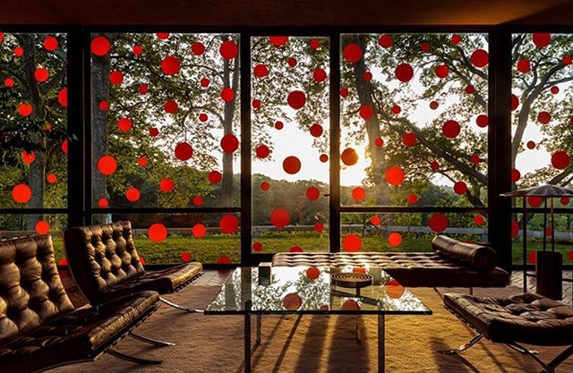 yayoi kusama affixes 1200 vinly polka dots to phillip johnson's glass house.