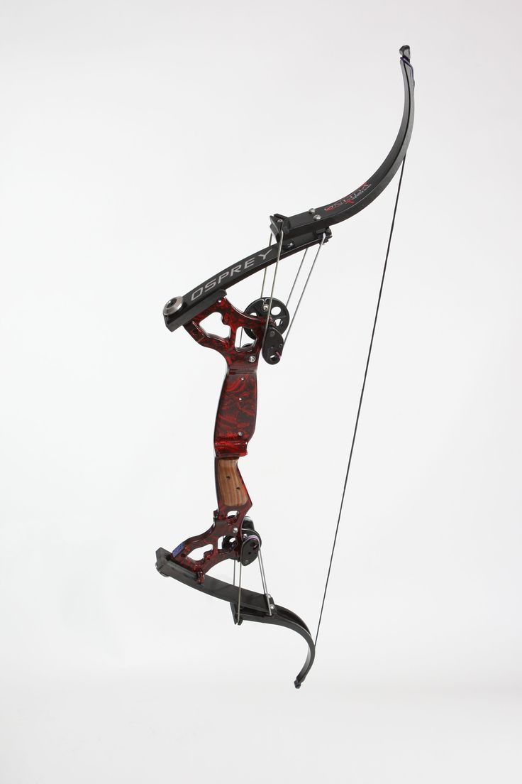 bowfishing extreme bows misc pinterest bowfishing