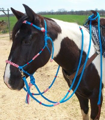 Y Knot Rope Tack, Natural Horsemanship Equipment, Custom Horse Tack, Rope Halters, Leads, Reins