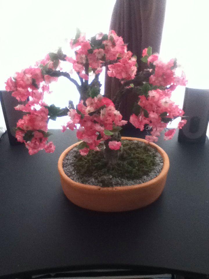Bonsai artificial de cerezo