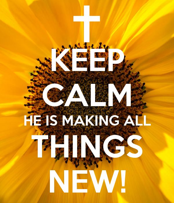 Keep calm... He is making ALL things new!