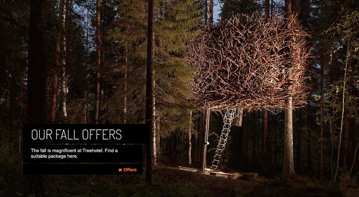 These hotels look THE BOMB! I will go here and stay in one. Treehouse Hotels Harads, Sweden