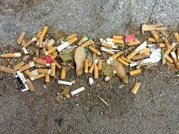 Resultado de imagen para como el hombre daña el medio ambiente
