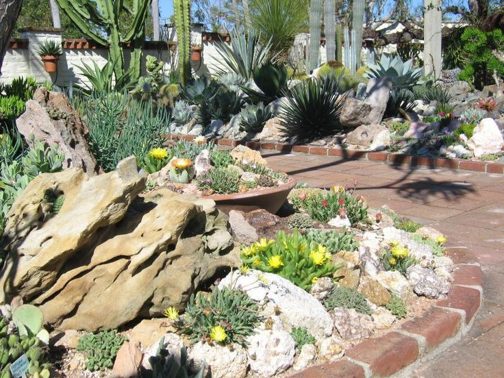matts succulent garden at sherman library and gardens xeric world forums