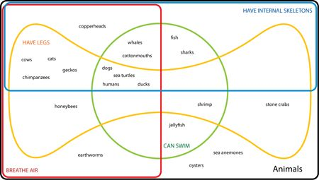 4set edwardsvenn diagram classifying animals  venn