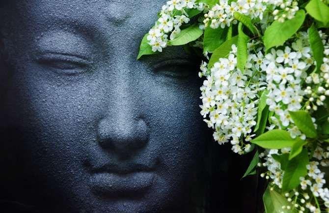 Karma öğretileri ile kendinizi daha iyi tanıyabileceğiniz, hedeflerinize daha kolay ulaşabileceğiniz bir yaşam tarzı yaratmak mümkün olabilir.