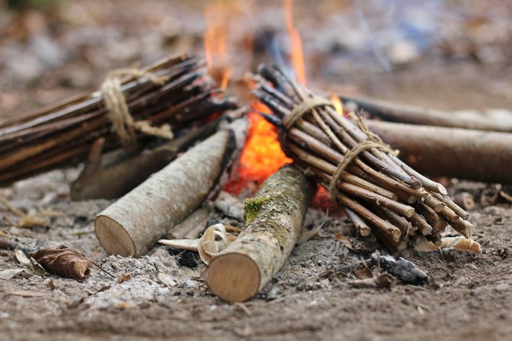 Six survival skills you should learn now