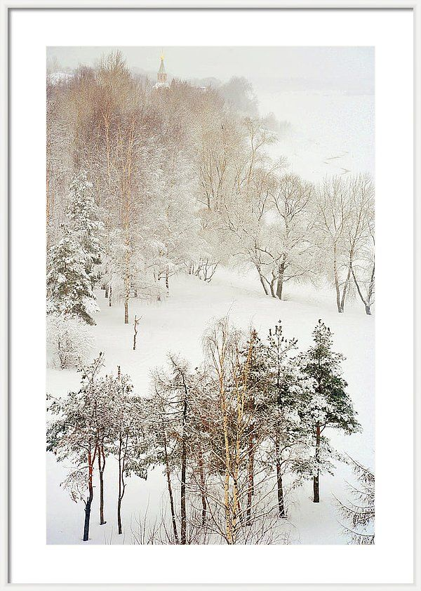 Framed Print of photograph Winter Delight by Jenny Rainbow. Charming winter scene with lacy trees after heavy snow fall in Russian countryside.  This work bringing the tenderness and lightness with soothing harmonic vibes to your home.  A beautiful idea for Christmas gift for family or for friends.  Available as canvas, metal, acrylic, wood and framed prints. To buy this print simply click on PIN. #JennyRainbowFineArtPhotography #Christmas #Winter #HomeDecor
