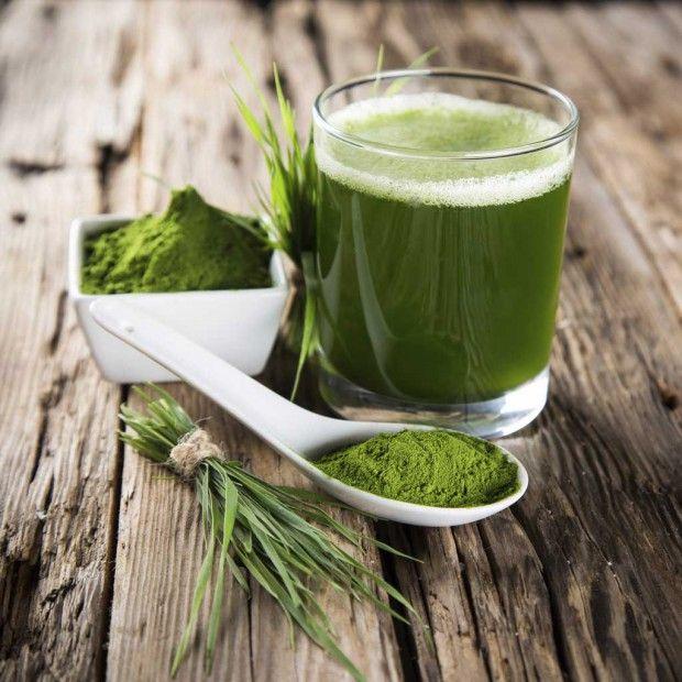 Faut-il se mettre aux super algues ?  - ELLE Spiruline
