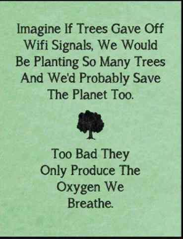 Reason to go green and save trees