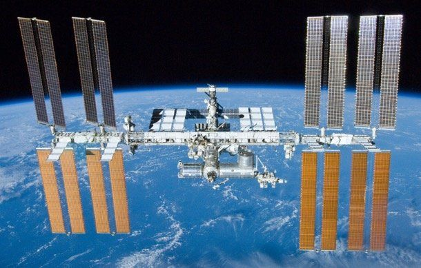 Most bacteria and fungi found on ISS are the same harmless ones found in human environments on Earth.