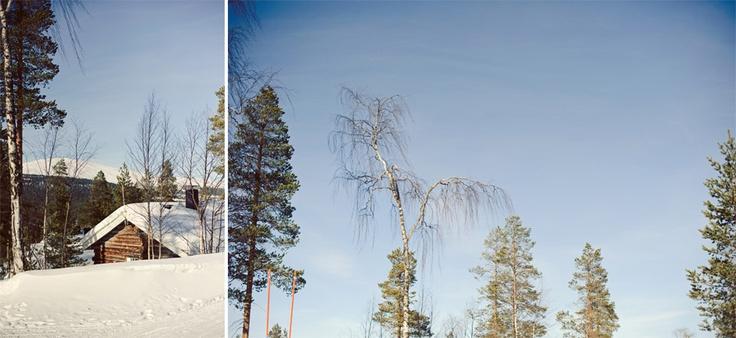 johannahietanen.com / Ylläs, Lapland / http://johannahietanen.com/personal_/trip-to-yllas-lapland-2011-valokuvaaja-yllas/