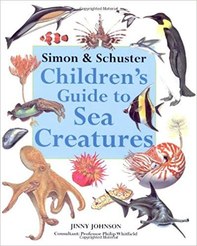 Simon Schuster Childrens Guide To Sea Creatures Jinny Johnson 9780689815348 Amazon
