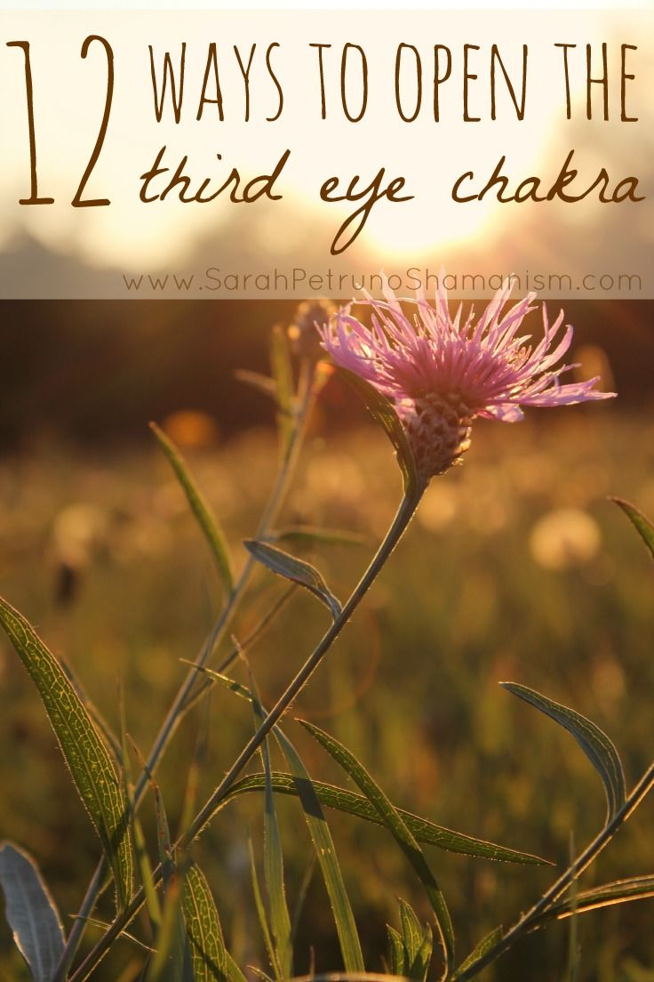 12 Ways to Open the Third Eye Chakra - get ideas, gain insight, and grow. Find all 12 ways at www.SarahPetrunoShamanism.com